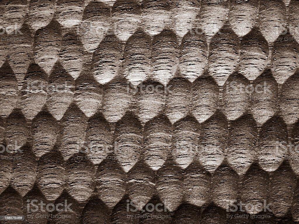 textured walnut stock photo