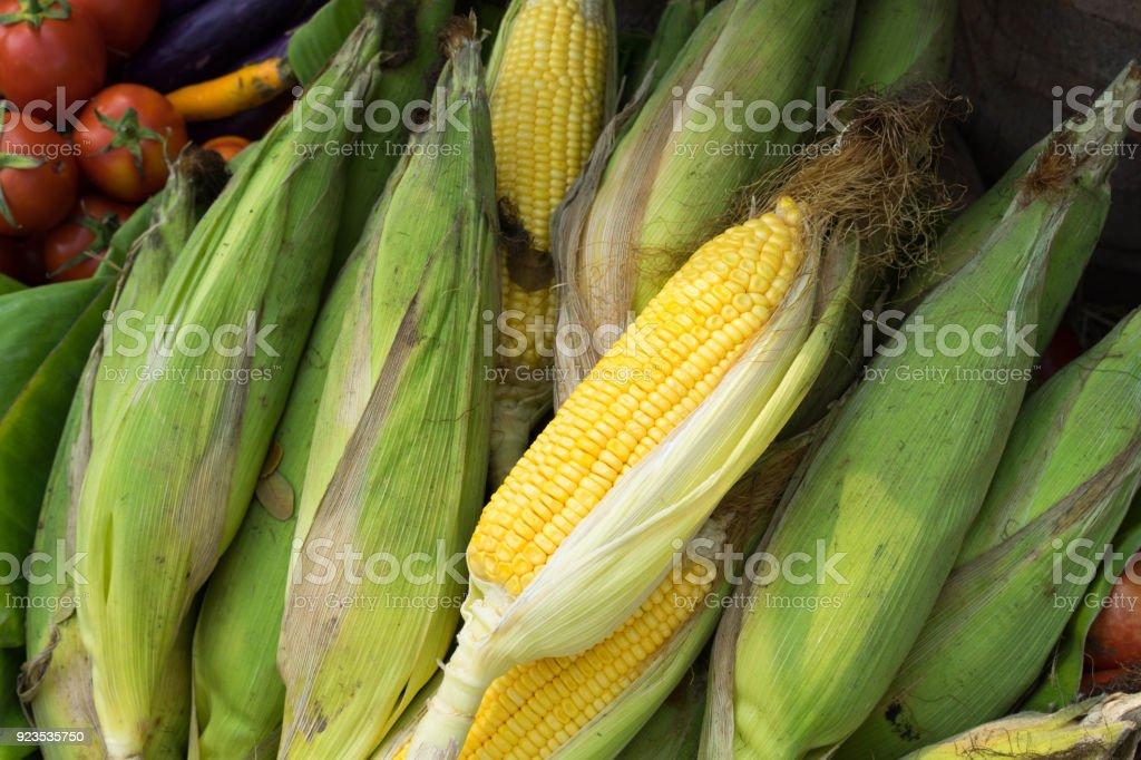 Textures sweet corn stock photo