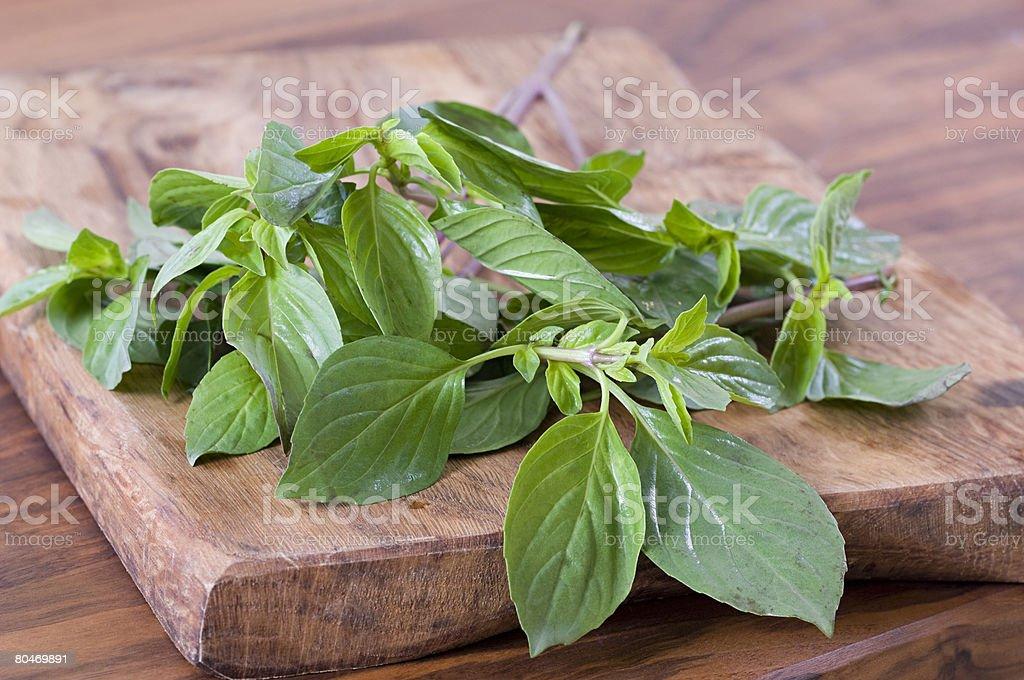 Thai basil stock photo