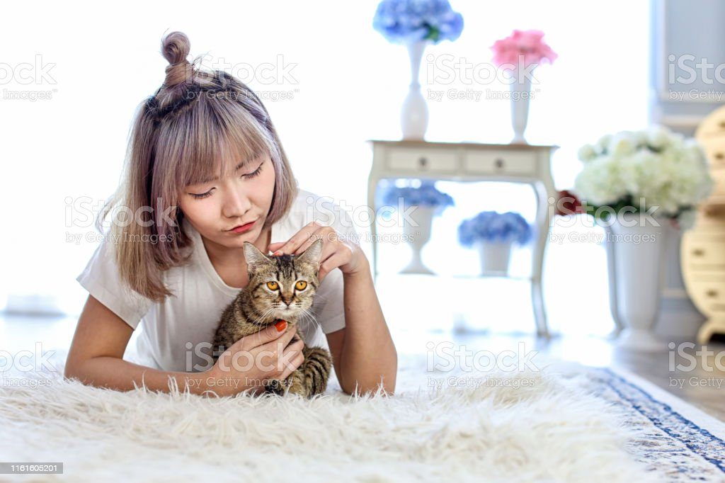 Thai cat in the embrace of the woman lying on the wool carpet. Young...