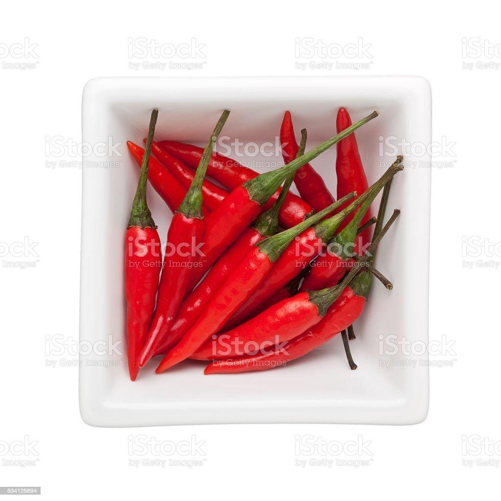 Thai chili stock photo