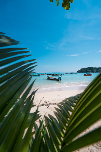 Thai fishing boat on the turquoise coast, picture framed by palm leaves. Summer vacation and nature travel adventure concept. Vertical photo