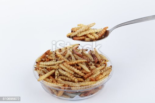 istock Thai Insects, Fried insects mealworms for snack. 510695672