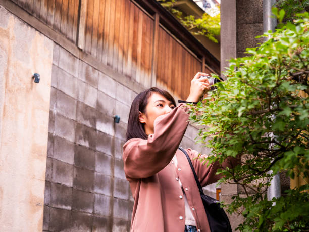 Thai Lady taking a photo about Japanese tree in Tokyo. stock photo