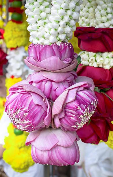 thai lotus knospe girlande - jasmin party stock-fotos und bilder