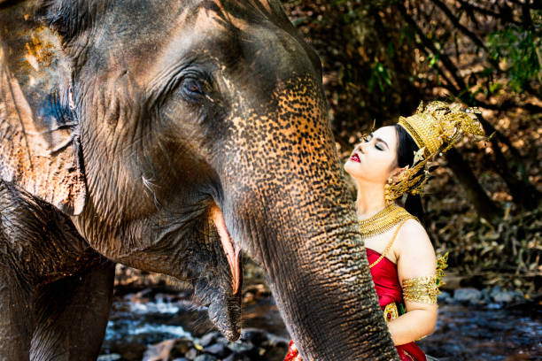 Thai Model and Elephant stock photo