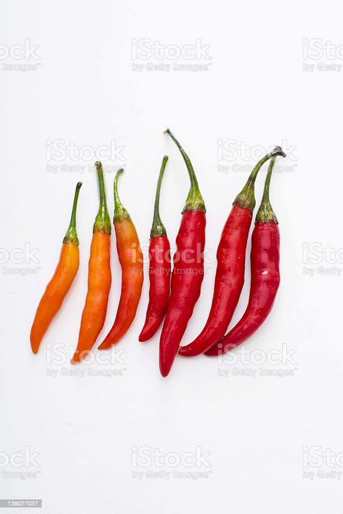 Thai Spicy Chillies stock photo