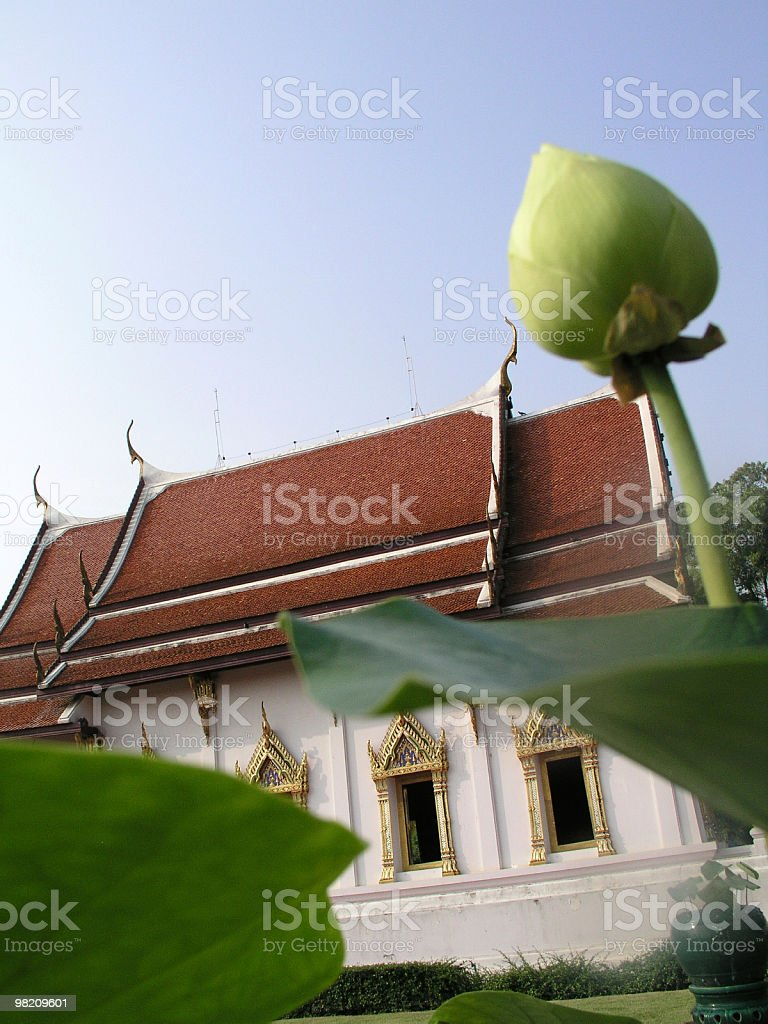 Thai temple and lotus royalty-free stock photo