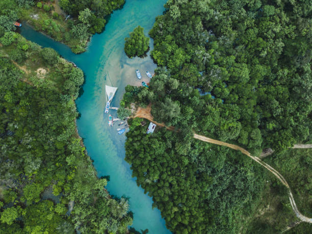Thailand aerial landscape, drone view of river in green tropical forest, beautiful nature Thailand aerial landscape, drone view of river in green tropical forest, beautiful nature scenery of jungle wilderness koh chang stock pictures, royalty-free photos & images