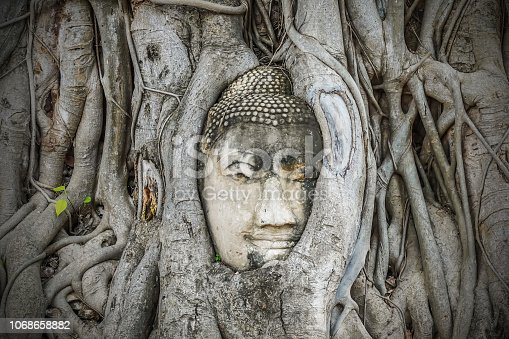 Thailand Buddha head emerged from the old trees roots at Wat Mahathat, Ayutthaya