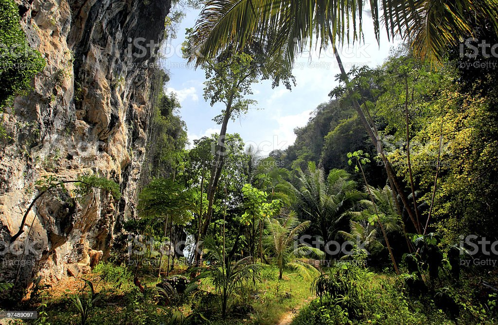 Thailand, forest, limestone cliffs royalty-free stock photo