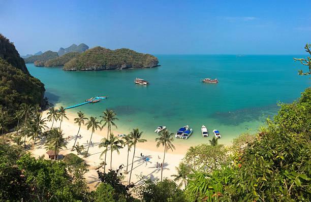 Thailand tropical island palm trees foto
