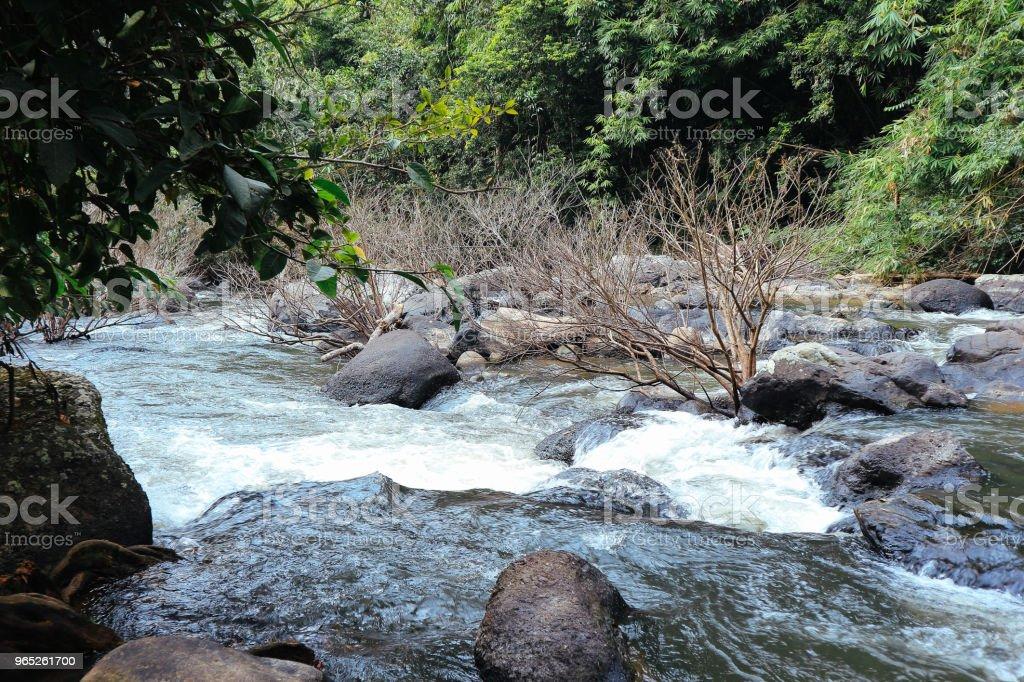 Thailand Waterfall - zdjęcia stockowe i więcej obrazów Bez ludzi