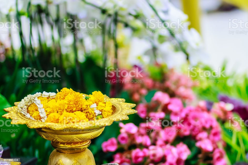 Thai's style golden tray with pedestal in the backround of Beautiful Kalanchoe Calandiva flowers. Ideal for putting the steering sacrifice. Shot in high ISO with grain stock photo