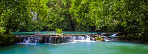 thanbok kratong waterfall than bok khorani national park krabi province of thailand - kratong stock photos and pictures