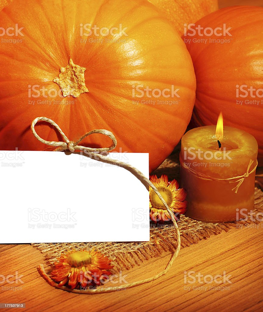 Thank you, thanksgiving greeting card royalty-free stock photo