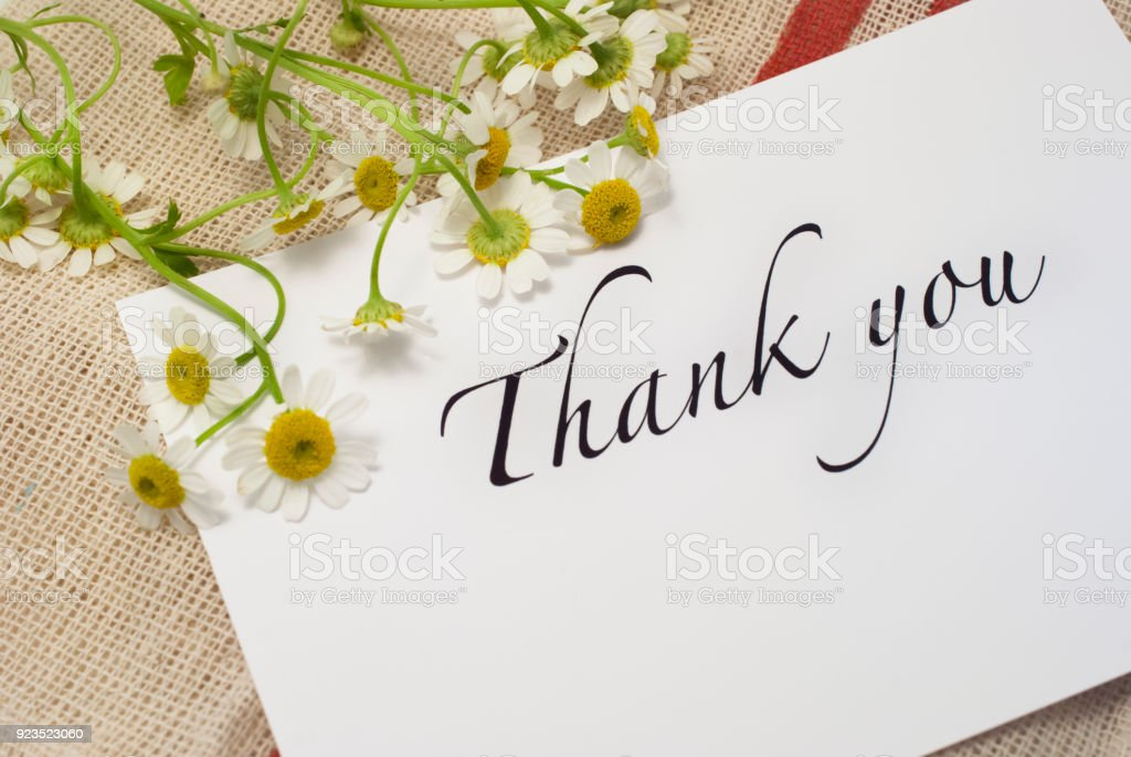 非常に多くのカードをありがとう - お祝いのロイヤリティフリーストックフォト
