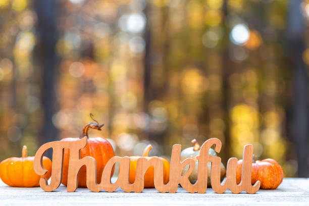 Thankful message Thanksgiving theme