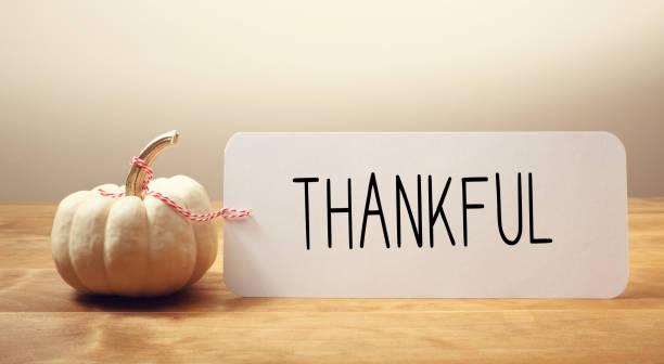 thankful message with a small pumpkin - gratidão imagens e fotografias de stock