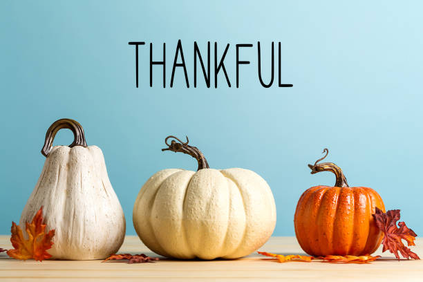 thankful message with pumpkins - autumn stock pictures, royalty-free photos & images