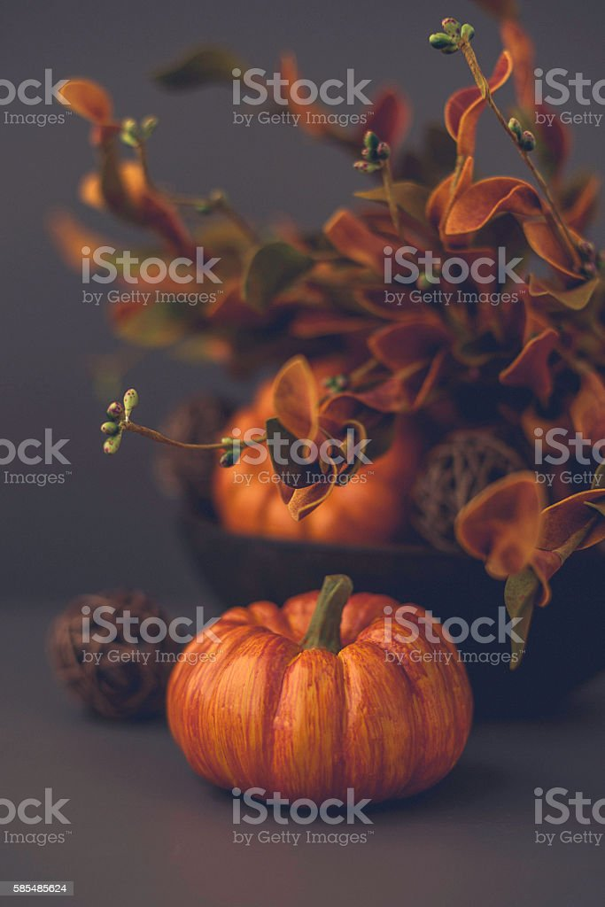 Thanksgiving and fall still life with pumpkins and leaves stock photo
