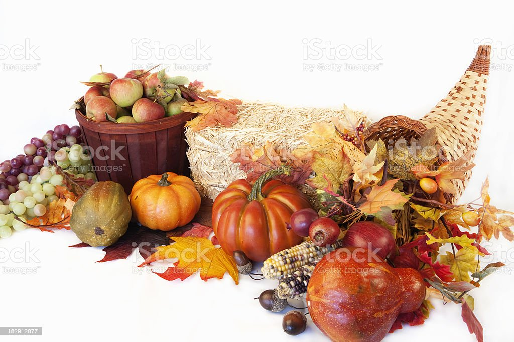 Thanksgiving Arrangement royalty-free stock photo