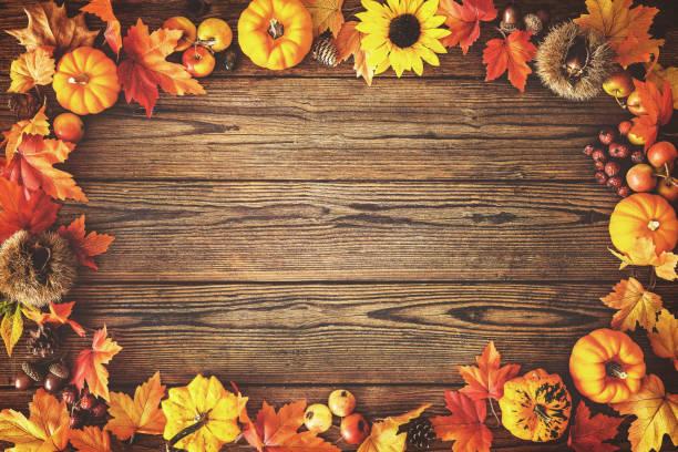 fond d'automne thanksgiving - couleur des végétaux photos et images de collection
