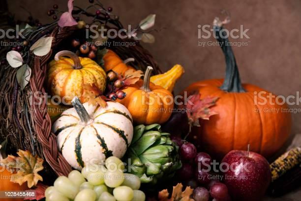 Thanksgiving autumn cornucopia picture id1028458468?b=1&k=6&m=1028458468&s=612x612&h=qzn4mg2crezu4  yntioickroxpgsih3vmeeras2ape=