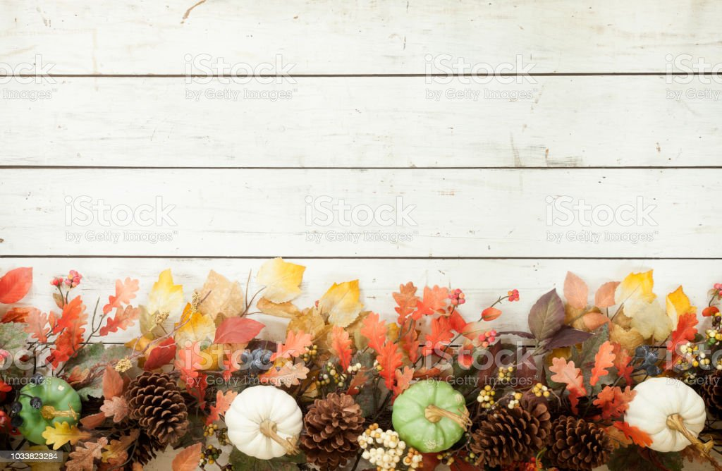 Thanksgiving Autumn Harvest Pumpkin Garland on an Old White Wood Background stock photo