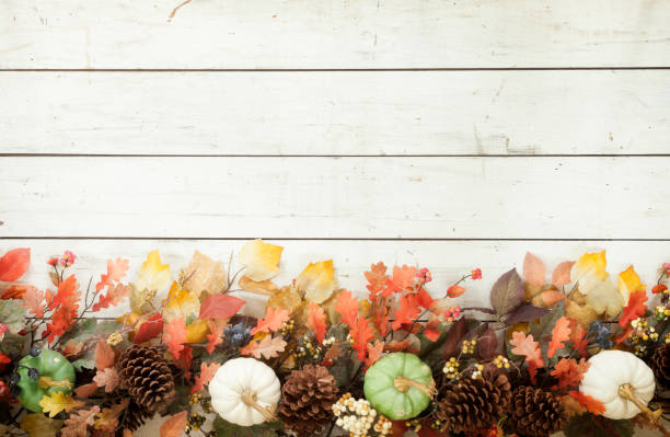 Thanksgiving Autumn Harvest Pumpkin Garland on an Old White Wood Background - foto stock
