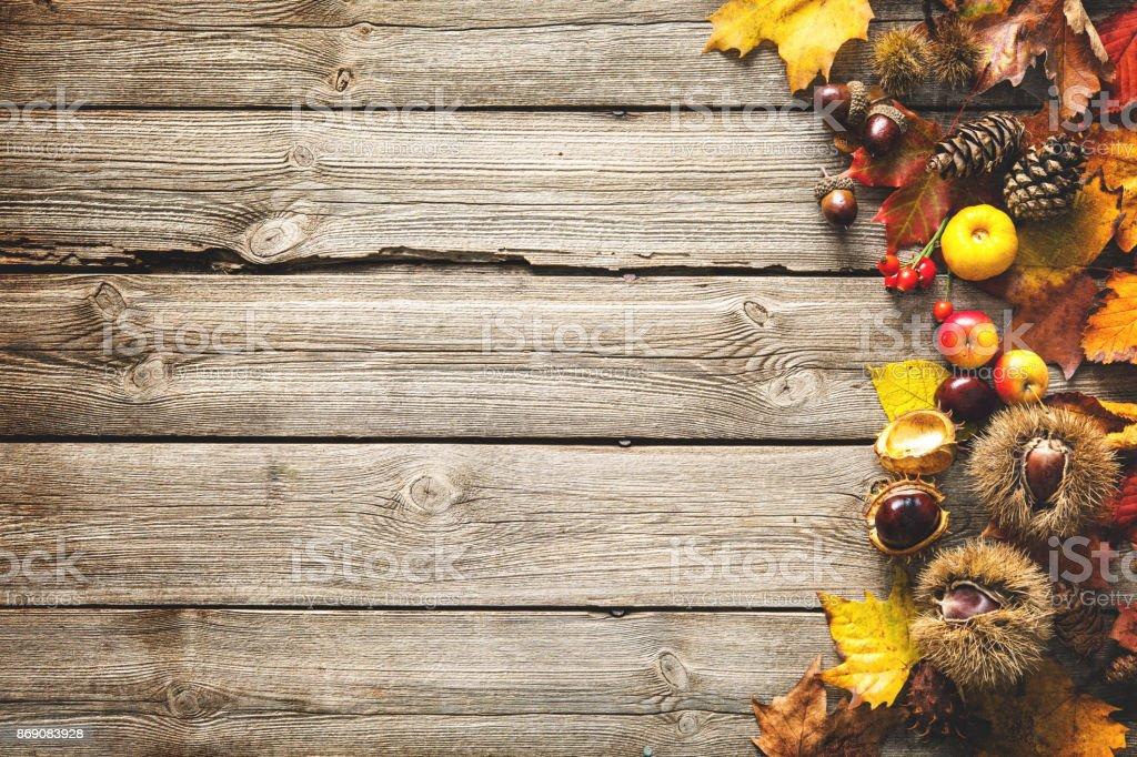 Thanksgiving herbstlichen Hintergrund – Foto