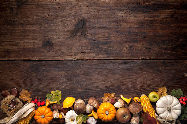 thanksgiving background - gourd stock photos and pictures