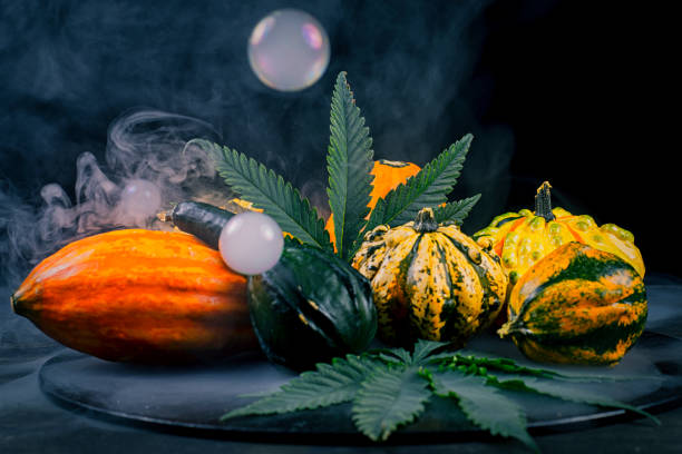 Thanksgiving background with autumnal squash, gourds and cannabis leaf