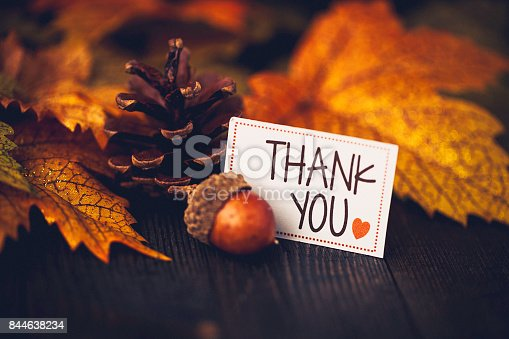 istock Thanksgiving background with leaves and message 844638234