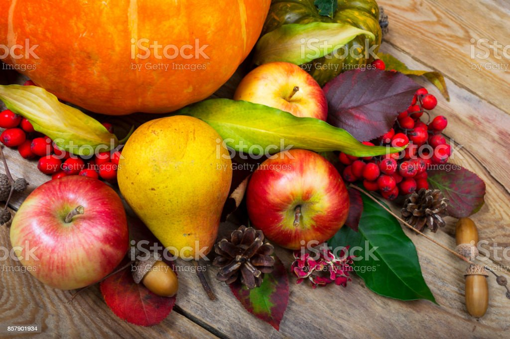 Thanksgiving background with pumpkin, apples, pear, colorful leaves stock photo