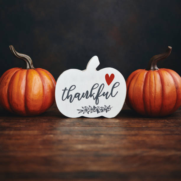 Thanksgiving background with pumpkins and thankful sign stock photo
