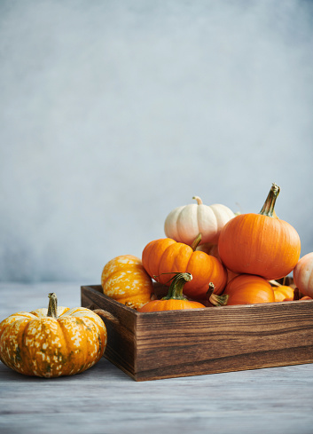 Thanksgiving background with pumpkins in wooden crate