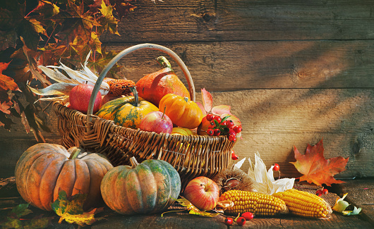istock Thanksgiving background with pumpkins 853514832