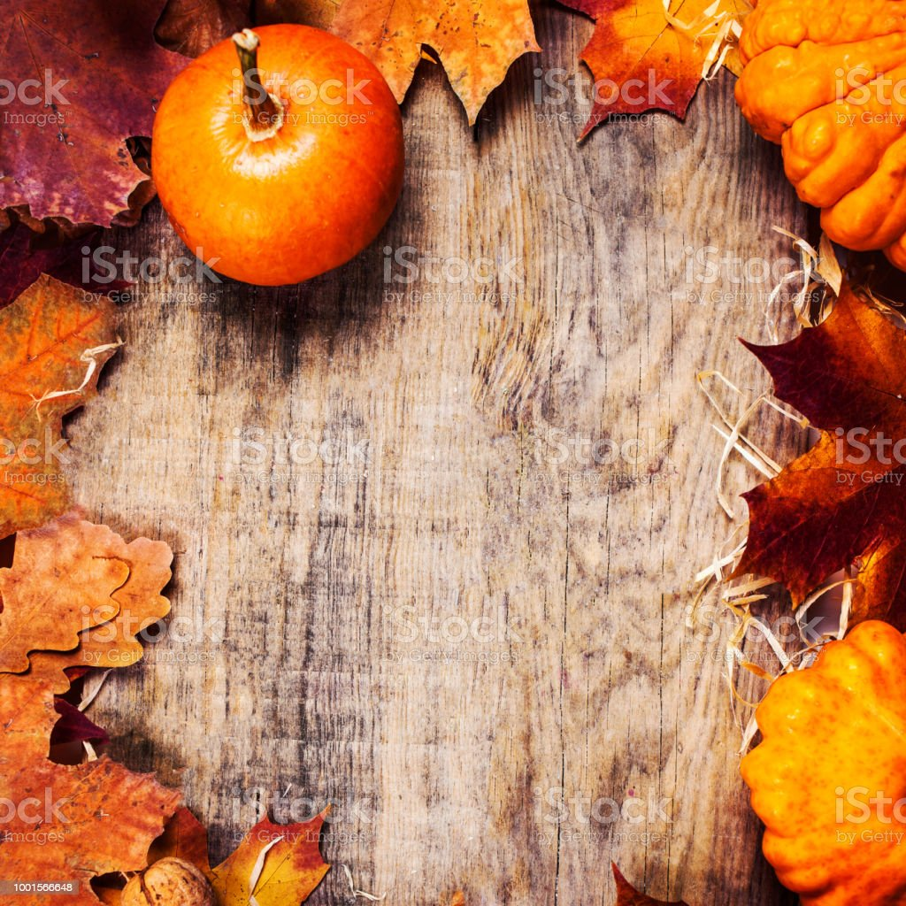 Thanksgiving border or frame with orange pumpkins and colourful leaves on wooden background. Thanksgiving Day autumn background, autumnal concept'n stock photo