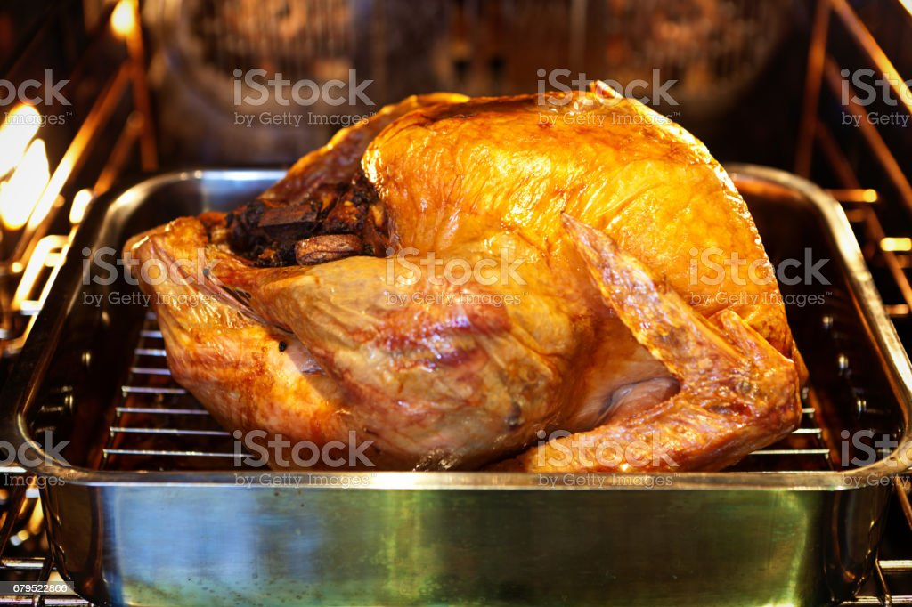Thanksgiving Christmas Roast Turkey in the Oven stock photo