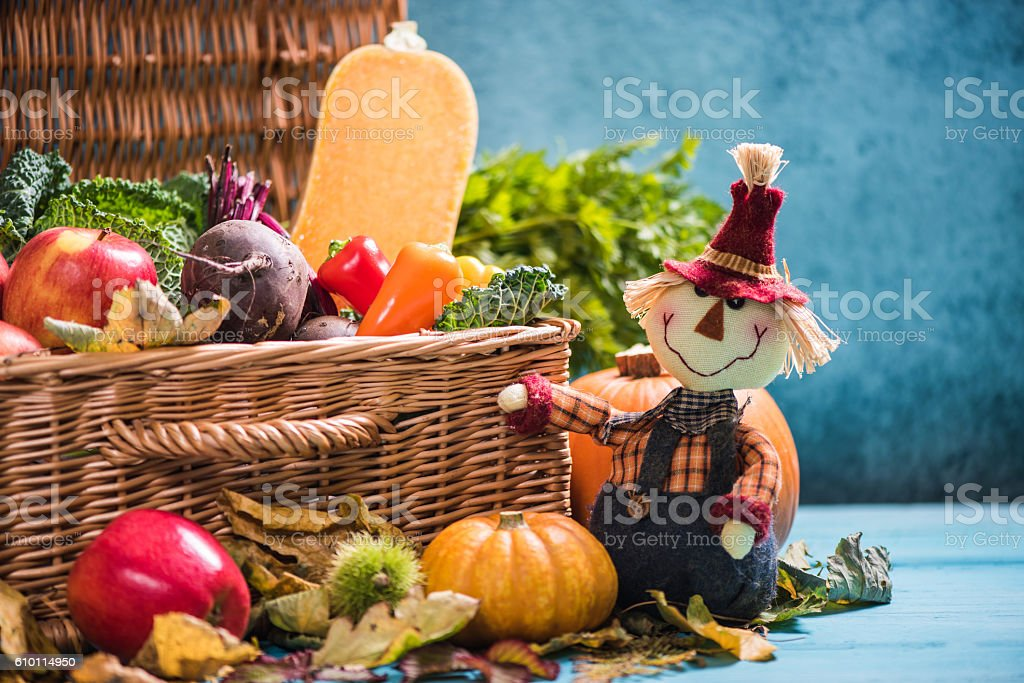 Thanksgiving concept, local harvest produce stock photo