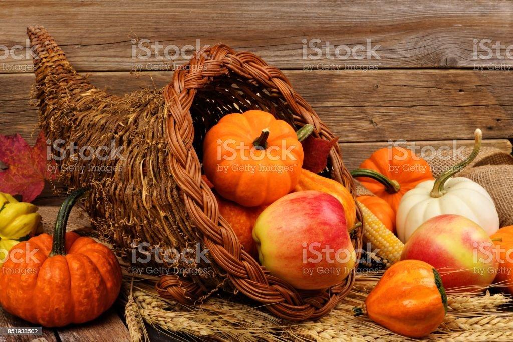 Thanksgiving cornucopia against rustic wood stock photo