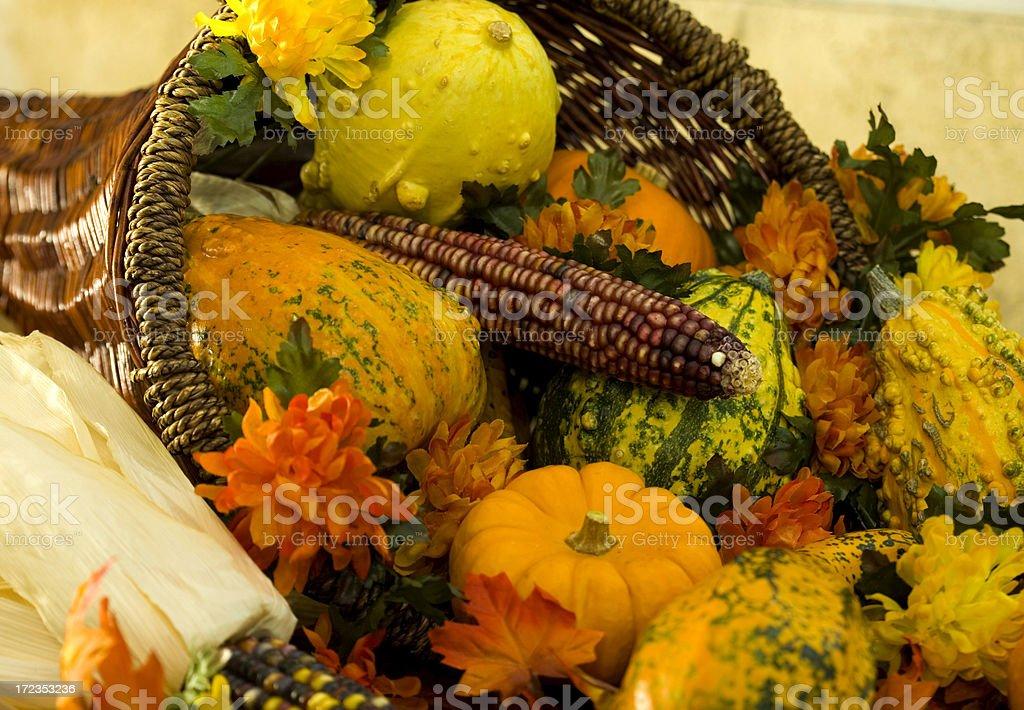 Thanksgiving Cornucopia royalty-free stock photo