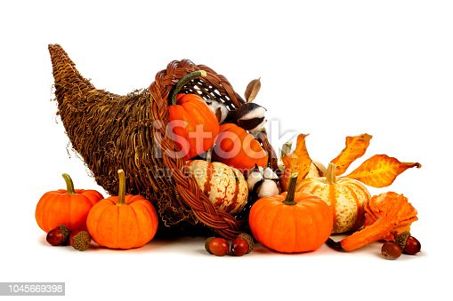 Thanksgiving cornucopia filled with pumpkins isolated on a white background
