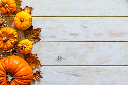 Thanksgiving day or autumn gourds holiday background