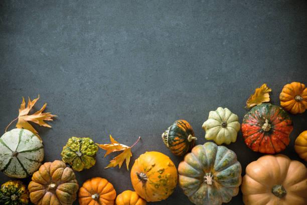 thanksgiving day oder saisonale herbstlichen hintergrund mit kürbissen und laub - hokkaido kürbis zubereiten stock-fotos und bilder