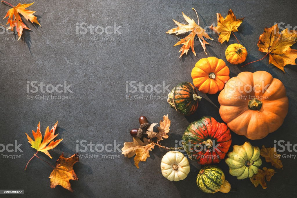 Thanksgiving day or seasonal autumnal background with pumpkins and fallen leaves stock photo