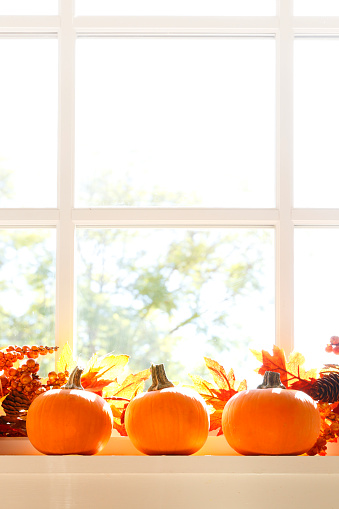 Three pumpkins and an autumn garland rest on a window sill as the morning or late afternoon sunlight streams in from outside.