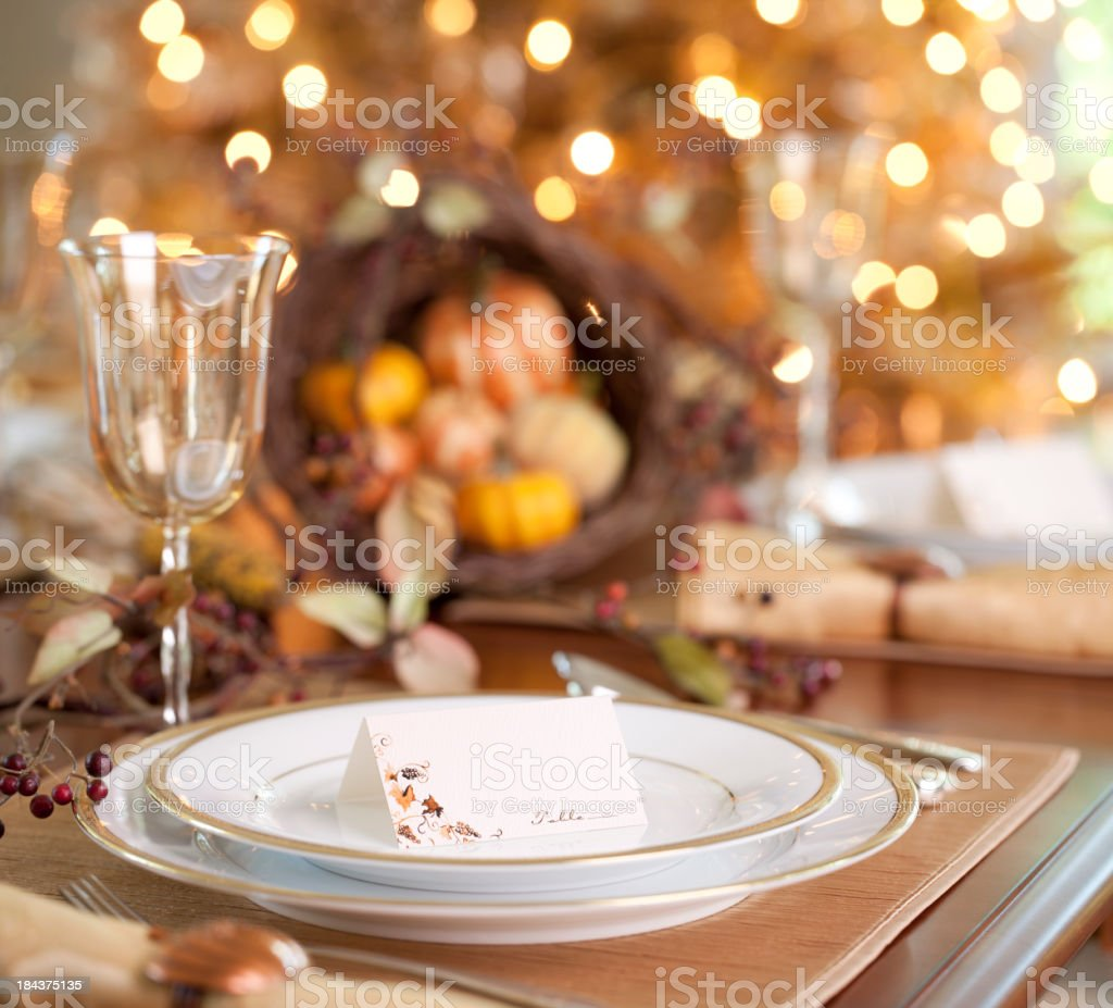 Thanksgiving Dining royalty-free stock photo