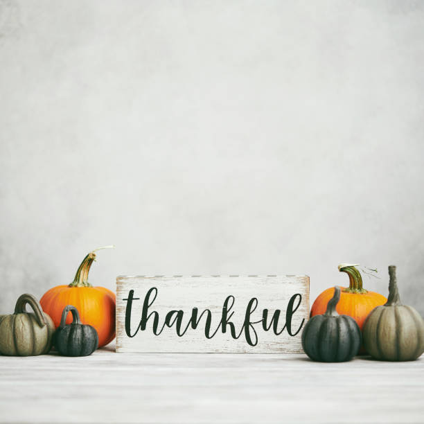 Thanksgiving Fall Background with Assortment of Pumpkins and Thankful Sign stock photo